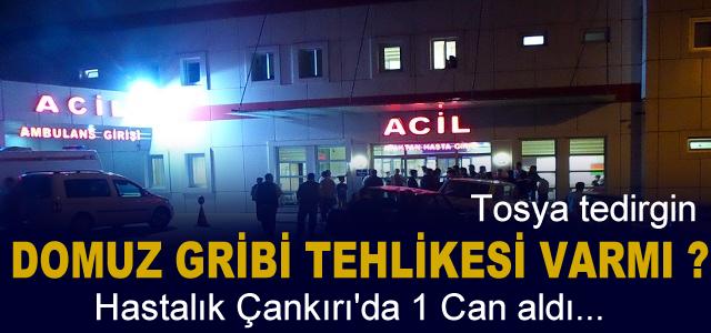 DOMUZ GRİBİ TEHLİKESİ ÇANKIRIDA 1 CAN ALDI
