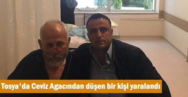 Tosya'da Ceviz Ağacından Düşen Bir Kişi Yaralandı