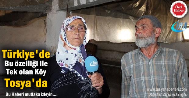 Türkiye'de Bu Özelliği ile Tek olan Köy Tosya'da