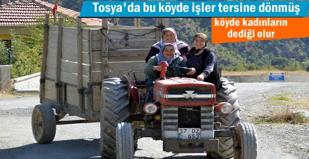 Tosya'da Dağardı Köyünde işler tersine dönmüş