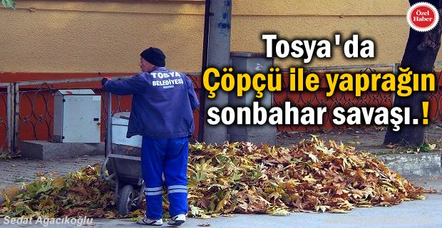 Tosya'da Çöpçüler sonbahar yaprak temizliği ile mücadele ediyor