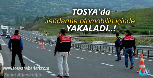 Tosya İlçe Jandarma Otomobil içinde yakaladı