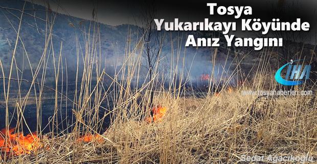 Tosya Yukarı Kayı Köyünde Anız Yangını