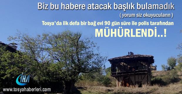 Tosya'da bir Bağ Evi 90 gün süre ile Mühürlendi