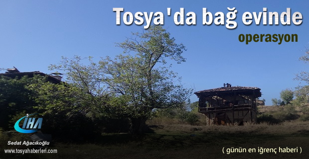 Tosya'da Terkedilmiş bağ evinde  Operasyon