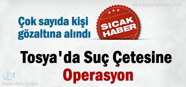 Tosya'da Suç Çetesine Operasyon