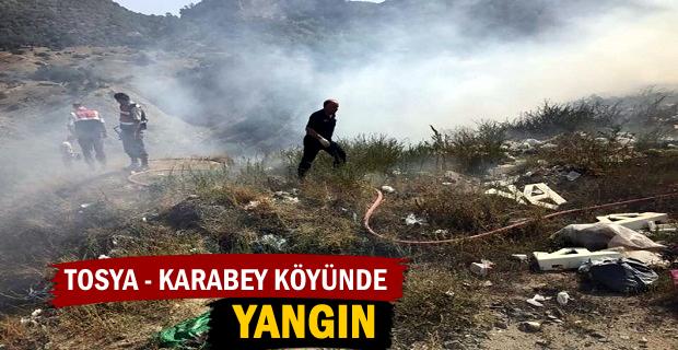 Tosya – Karabey köyünde Çöplük alanda Yangın