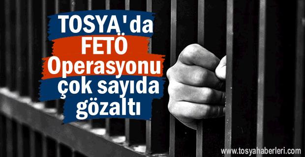 Tosya'da FETÖ Operasyonu Çok Sayıda Gözaltı