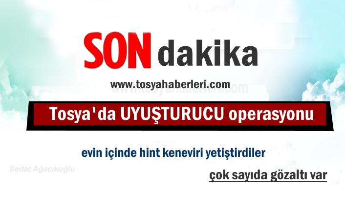 Tosya'da Uyuşturucu Operasyonu
