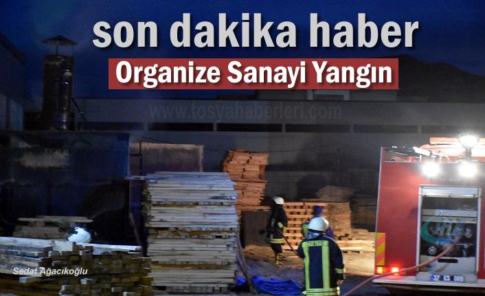 Tosya Organize Sanayide Fabrikada Yangın
