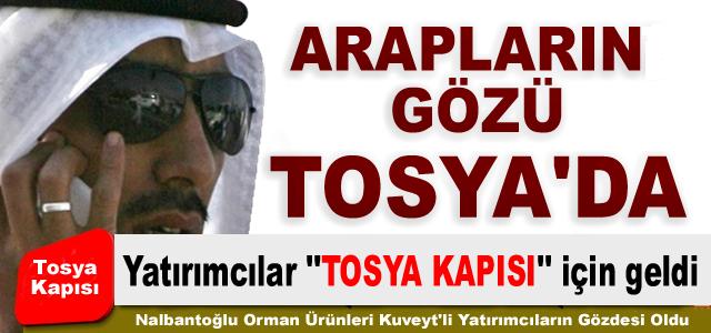 ARAP YATIRIMCILARIN YENİ GÖZDESİ ''TOSYA KAPISI''OLDU