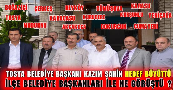 Bölgesel Belediye Başkanları Toplantısı Tosya'da yapıldı