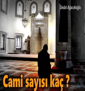 Tosya'da Kişi Başına Kaç Cami İbadete açık