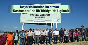 Tosya'da 15 Temmuz Demokrasi Şehitleri Hatıra Ormanı Kuruldu