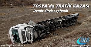 Tosya'da Demir Taşıyan TIR Tarlaya Uçtu