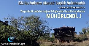 Tosya#039;da bir Bağ Evi 90 gün...