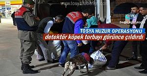 Tosya Huzur Operasyonuna detektör...