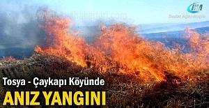 Çaykapı köyünde anız yangını korkuttu