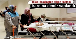 Tosya#039;da yüksekten düşen kadına...