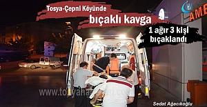 Tosya- Çepni Köyünde Kooperatif kavgası kanlı bitti