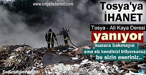 Tosya#039;nın Ciğerleri Yanıyor