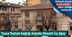 TOSYA TOPLUM SAĞLIĞI ÖNÜNDE KIZILDERİLİ...