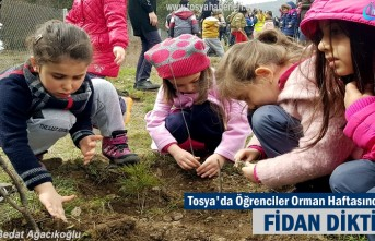 Tosya'da Öğrenciler Orman Haftasında Fidan dikti