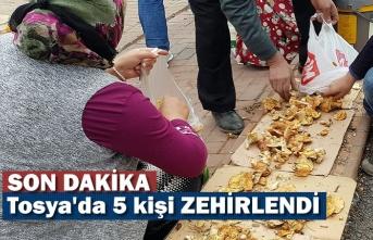 Tosya'da 5 kişi Mantardan Zehirlendi