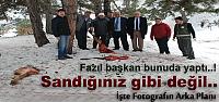 Tosya'da Yaban Hayatı Koruma Çalışmaları...