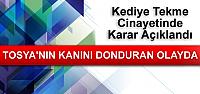 TOSYA'NIN KANINI DONDURAN CİNAYETTE KARAR...