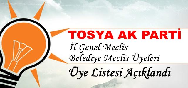 Tosya Ak Parti Meclis Listesi Açıklandı