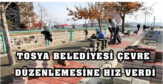 Tosya Belediyesi Çevre Düzenlemesine Hız verdi