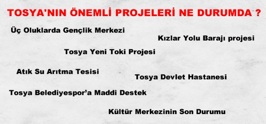 Tosya Heyeti Başbakan Yardımcıları ile görüştü