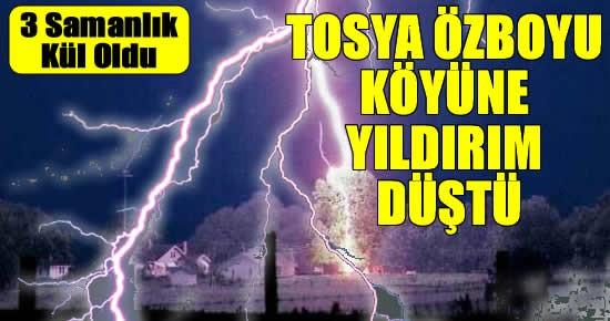 Tosya Özboyu Köyüne Yıldırım Düştü 3 Samanlık Yandı