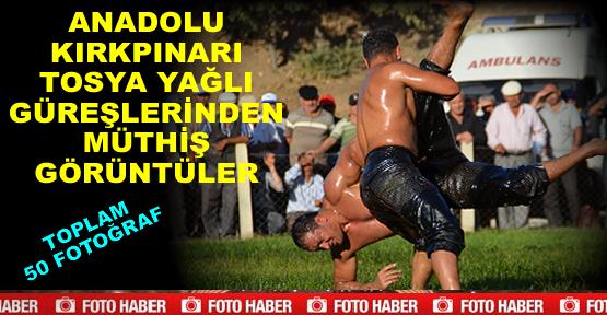Tosya Yağlı Güreşlerin FOTO GÖRÜNTÜ
