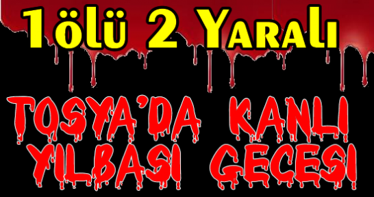 Tosya'da Cinayet 1 Ölü 2 Yaralı