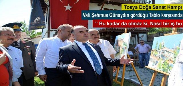 VALİ ŞEHMUS GÜNAYDIN TOSYA DOĞA SANAT KAMPINDA SANAT ESERLERİNE HAYRAN KALDI
