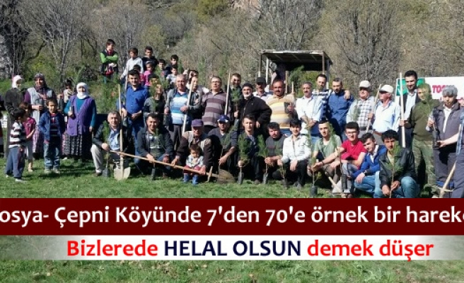 Çepni Köyü ''Senin de Köyünde Bir Dikili Ağacın Olsun'' etkinliği düzenledi