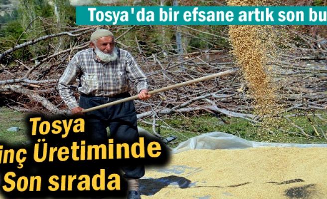 Tosya Pirinç üretiminde son sırada