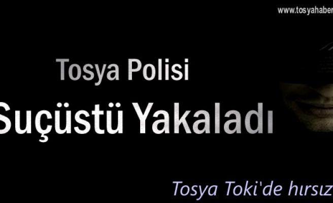 Tosya Toki'de Hırsızlık