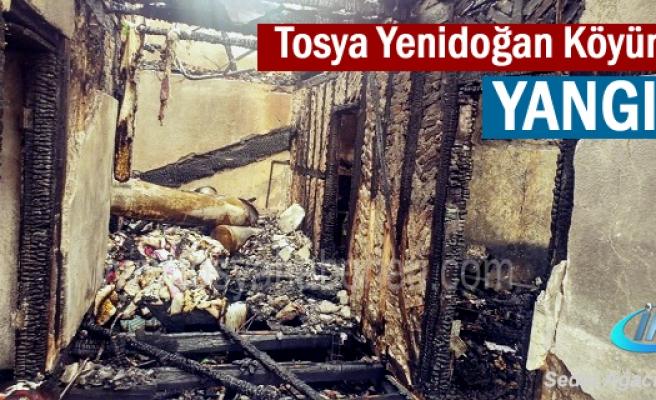 Tosya Yenidoğan Köyünde  YANGIN