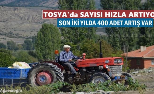 TOSYA'DA SAYISI HIZLA ARTIYOR