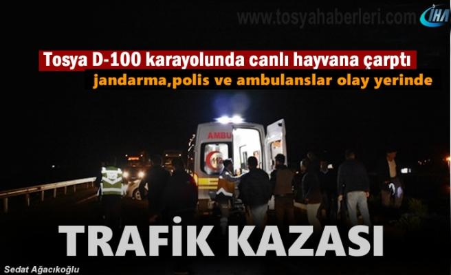 Tosya D-100'de Canlı hayvana çarpan otomobilde 2 kişi yaralandı