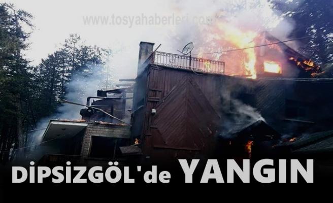 Tosya Tabiat Parkı Dipsizgöl'de Yangın