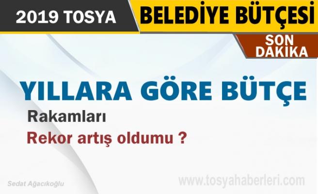 Tosya Belediyesi 2019 Yılı Tahmini Bütçe Açıklandı