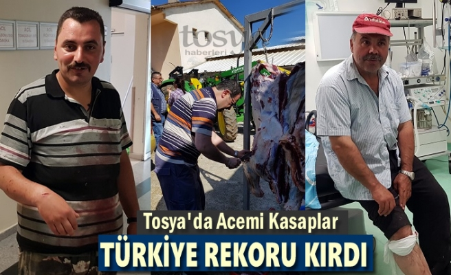 Tosya Acemi Kasaplıkta Türkiye Rekoru Kırdı