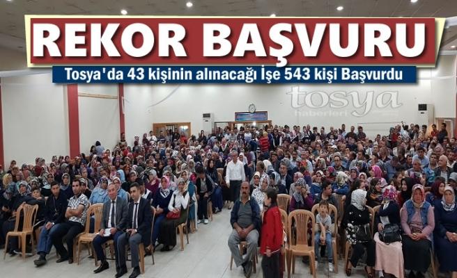 Tosya'da İŞKUR Alımına Rekor Başvuru