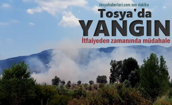 Tosya'da Kırsal Alanda Yangın Çıktı