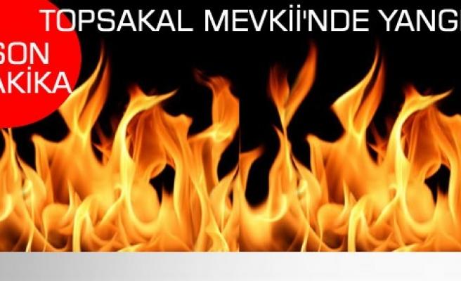 Tosya Topsakal Mevkii'nde Korkutan Yangın