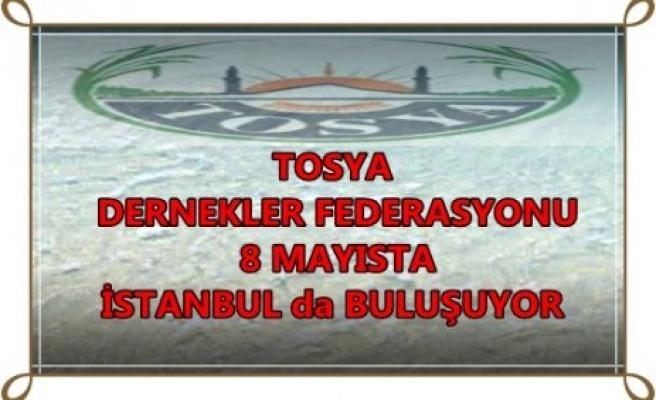 TOSYALI LAR 8 MAYIS'TA İSTANBUL'DA BULUŞUYOR